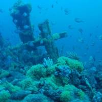 CSIRO films shipwreck of the Carlisle in Bass Strait